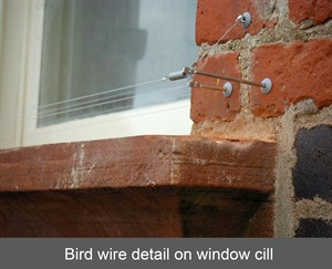 Bird Proofing Amp Deterrence Systems