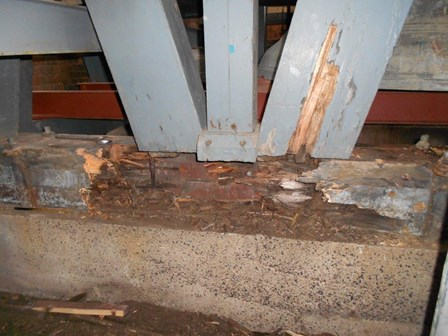 Evidence of damp and dry rot in the trusses at The Guildhall, Londonderry, Northern Ireland