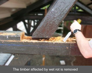 001 Ballymoney removing wet dry wood rot antrim northern ireland NI
