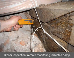002 dry rot monitoring decay wet rot timber splice repair damp timber truss wood belfast dublin northern ireland NI