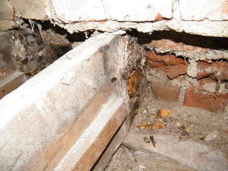 Bearing ends of joists and trusses were found to be suffering from a dry rot infestation, Derry